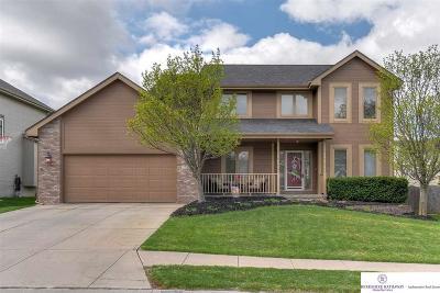 Omaha Single Family Home New: 17513 J Street
