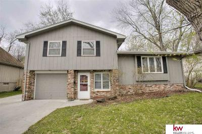 Papillion Single Family Home New: 716 Leprechaun Lane