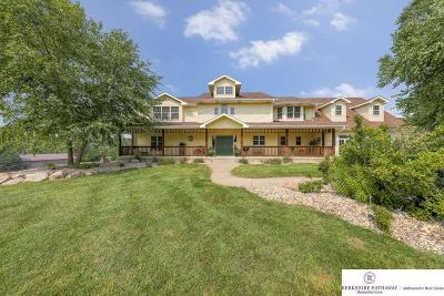 Omaha Single Family Home For Sale: 8404 Dutch Hall Road