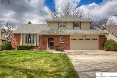 Omaha NE Single Family Home New: $270,000