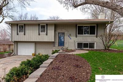 Omaha NE Single Family Home New: $185,000