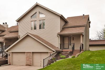 Omaha NE Single Family Home New: $173,000