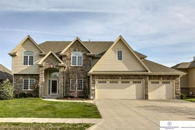 Omaha NE Single Family Home New: $539,000