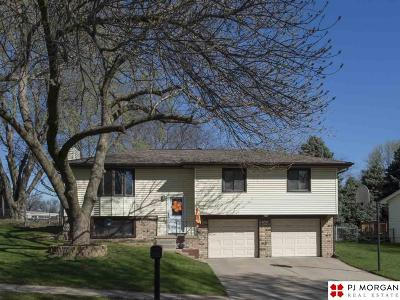 Single Family Home New: 8722 Honey Locust Drive