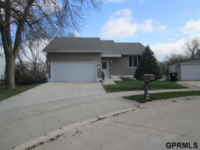 Plattsmouth Single Family Home New: 1212 Rogers Circle Circle