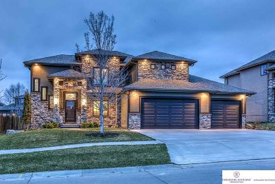 Omaha Single Family Home New: 3223 S 188 Avenue