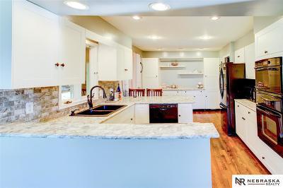 Omaha NE Single Family Home New: $310,000