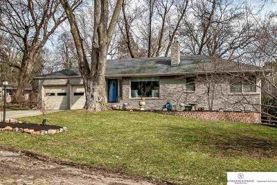 Omaha NE Single Family Home New: $449,000