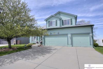 Omaha Single Family Home New: 4908 S 188 Avenue