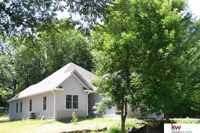 Plattsmouth Single Family Home New: 8711 Riverdale Road