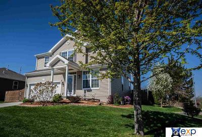 Omaha Single Family Home New: 3332 N 210th Street