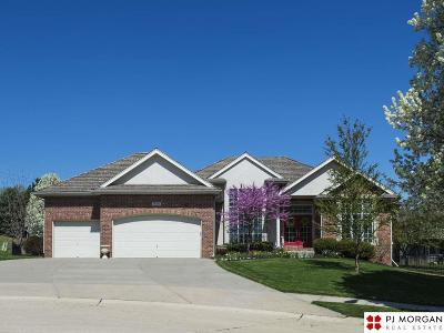 Omaha NE Single Family Home New: $450,000