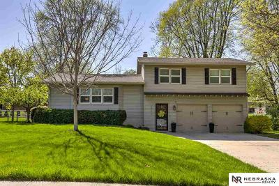 Omaha NE Single Family Home New: $235,000
