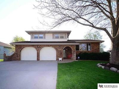 Elkhorn Single Family Home For Sale: 1019 Skyline Drive