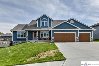 Bellevue Single Family Home For Sale: 2205 Lola Avenue