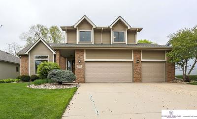 Bellevue Single Family Home For Sale: 2804 Blackhawk Drive