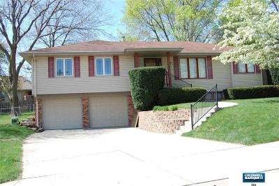 Single Family Home For Sale: 9211 Madison Street