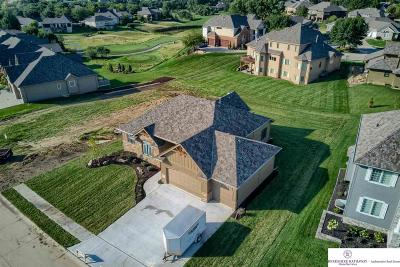 Omaha Single Family Home For Sale: 11549 Scott Street
