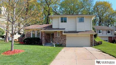 Bellevue Single Family Home For Sale: 1607 Chaput Drive
