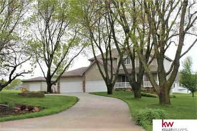 Cass County Single Family Home For Sale: 14700 42nd Street