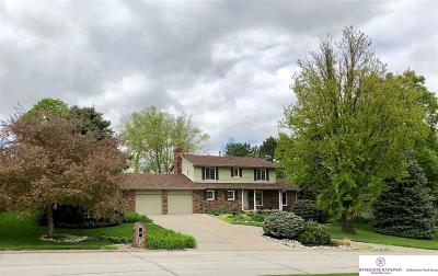 Omaha Single Family Home For Sale: 314 Heavenly Drive