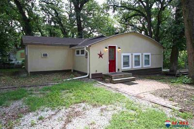 Crete Single Family Home For Sale: 2131 Blue River Lodge Circle