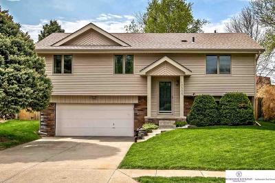 Omaha Single Family Home For Sale: 10505 Hartman Avenue