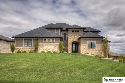 Omaha Single Family Home For Sale: 20816 U Circle