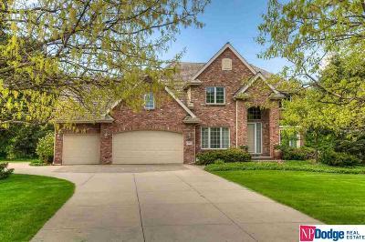Omaha Single Family Home For Sale: 9505 Davenport Street