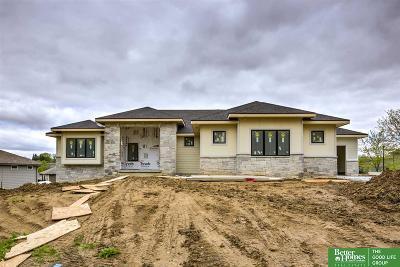 Omaha Single Family Home For Sale: 3006 N 193 Street