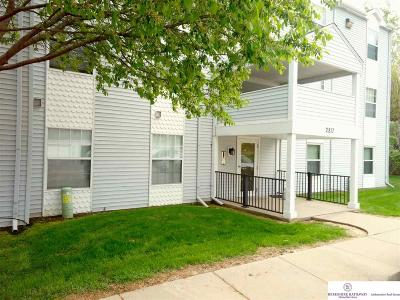 Council Bluffs Single Family Home For Sale: 2817 Macineery Drive #1301
