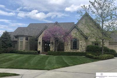 Omaha Single Family Home For Sale: 12313 Scott Circle
