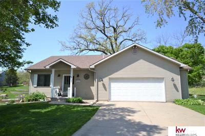 Cass County Single Family Home For Sale: 803 Otter Court