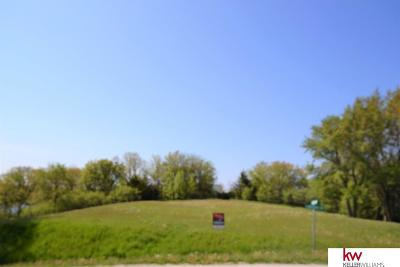 Plattsmouth Residential Lots & Land For Sale: Special Usage Lot 2 Drive