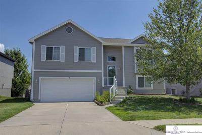 Omaha Single Family Home For Sale: 6019 S 188 Street