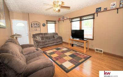 Single Family Home For Sale: 209 W Charles Street