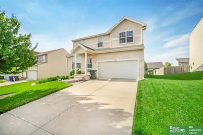 Omaha Single Family Home New: 10658 Potter Street