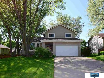 Papillion Single Family Home For Sale: 925 Iron Road