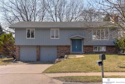 Omaha Single Family Home New: 5307 Tucker Street