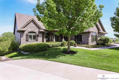 Omaha Single Family Home New: 12352 Potter Circle