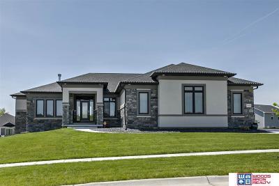 Lincoln Single Family Home New: 9445 Friedman Street