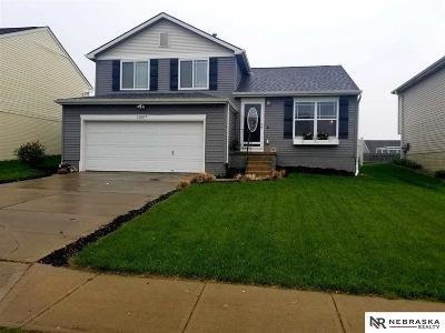 Omaha Single Family Home New: 11007 Potter Street