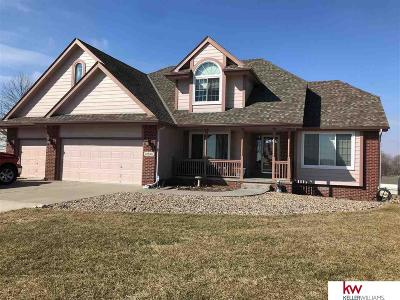 Cass County Single Family Home New: 14566 42nd Street
