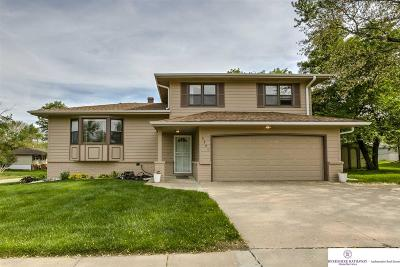 Omaha Single Family Home New: 9805 Ames Avenue