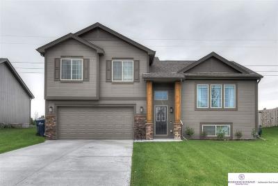 Bellevue Single Family Home New: 13803 S 42 Avenue