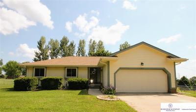 Sarpy County Single Family Home New: 3703 Marie Street