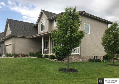 Papillion Single Family Home New: 12104 S 48 Street