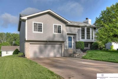 Omaha NE Single Family Home New: $168,000