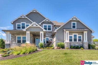 Single Family Home New: 11406 S 120 Avenue