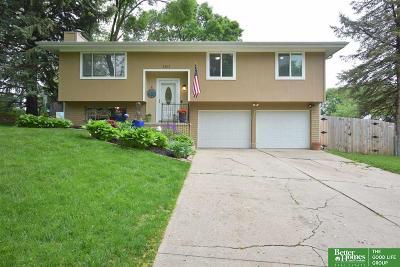 Omaha Single Family Home New: 1411 S 162nd Street